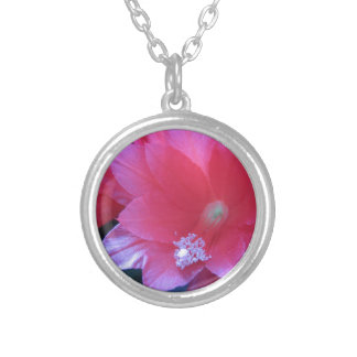 Christmas Cactus Flowers Round Pendant Necklace