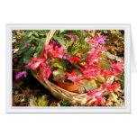 Christmas Cactus, Holiday Card 3