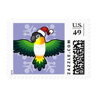 Christmas Caique / Lovebird / Pionus / Parrot Postage Stamp