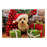 Christmas - Cairn Terrier - Roxy Poster