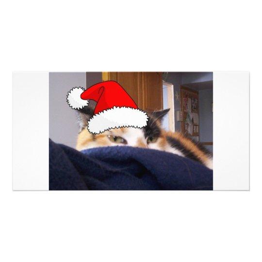 Christmas Calico Cat Card