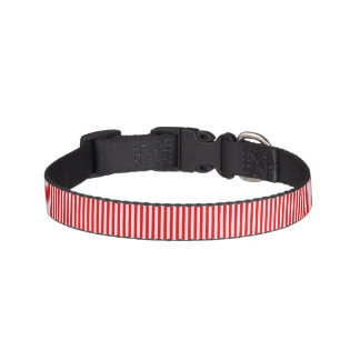 Christmas Candy Cane in Christmas Red Dog Collar