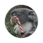 Christmas Candy Cane Koala Jelly Belly Candy Tin