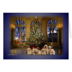 Christmas Card at Zazzle