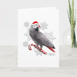 Christmas Card African Gray