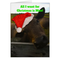 Christmas card - All I want for Christmas is Moo!