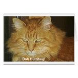 Christmas Card: Bah Humbug