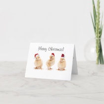 Christmas card - chicken design