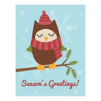 Christmas card featuring cute owl on pine branch postcard