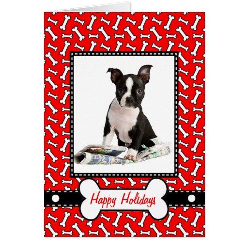 Christmas Card from the Dog - Naughty or Nice