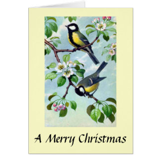 Christmas Card - Great Tits