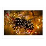christmas card postcard