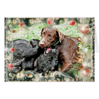 Christmas Card ~ puppy humor