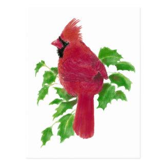 Christmas Cardinal Bird Nature Wildlife,Watercolor Post Card