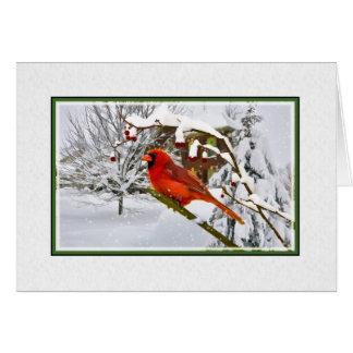 Christmas Cardinal Bird Snow Card