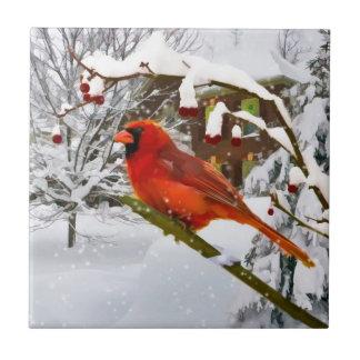 Christmas,  Cardinal Bird, Snow, Tile