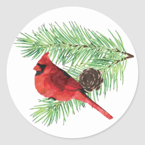 Christmas Cardinal/ Holiday Sticker