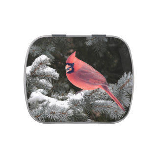 Christmas cardinal jelly belly tin