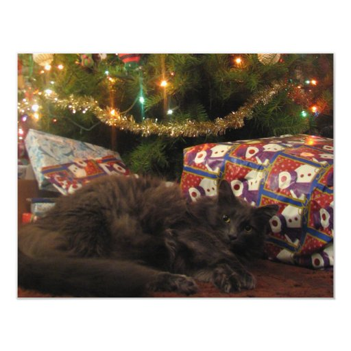 Christmas Cat 4.25x5.5 Paper Invitation Card
