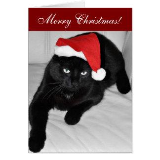 black cat christmas cards black cat christmas card. Black Bedroom Furniture Sets. Home Design Ideas