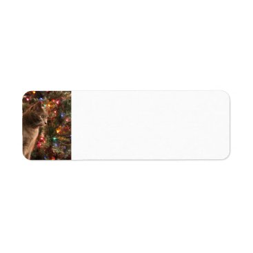 Christmas Themed Christmas Cat Address labels - grey cat