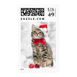 Christmas Cat At Red Santa's Hat Near Christmas Postage Stamp