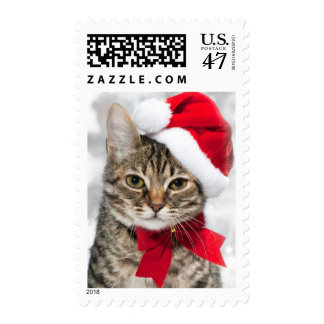 Christmas cat at red santa's hat postage