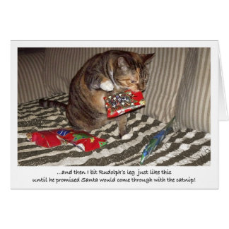 Christmas Cat Attack Card