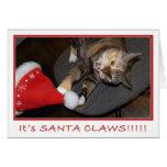 Christmas Cat Attack II Greeting Cards