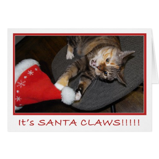 Christmas Cat Attack II Meowy Christmas Greeting Cards