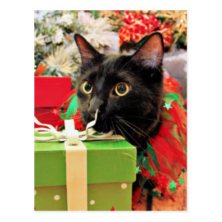 Christmas - Cat - Bentley Postcard