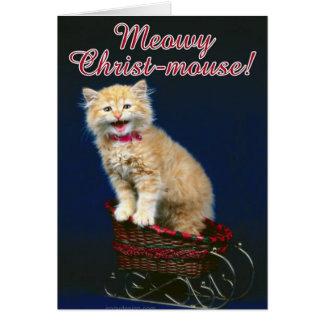 Christmas Cat Card