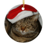 Christmas Cat Christmas Ornaments