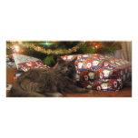 Christmas Cat Full Color Rack Card