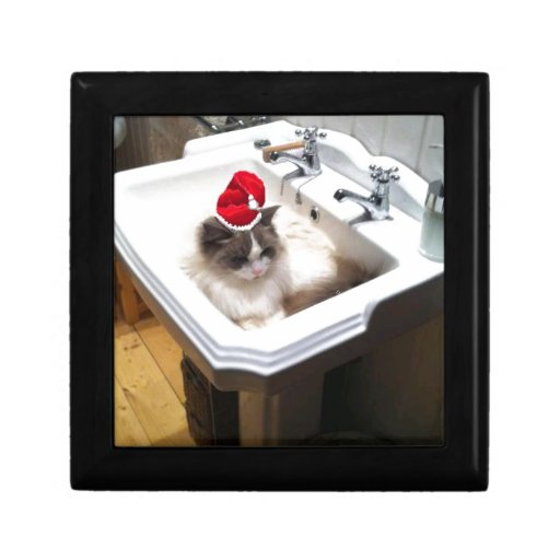 Christmas Cat Gift Boxes