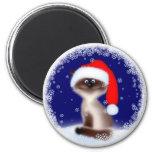 Christmas Cat in Santa Hat Magnet
