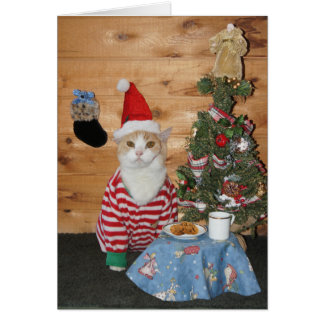 Christmas Cat/Kitty in PJs Greeting Card