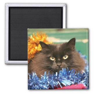 Christmas Cat Fridge Magnets