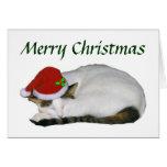 Christmas Cat Nap Card