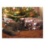 Christmas Cat Personalized Invitation