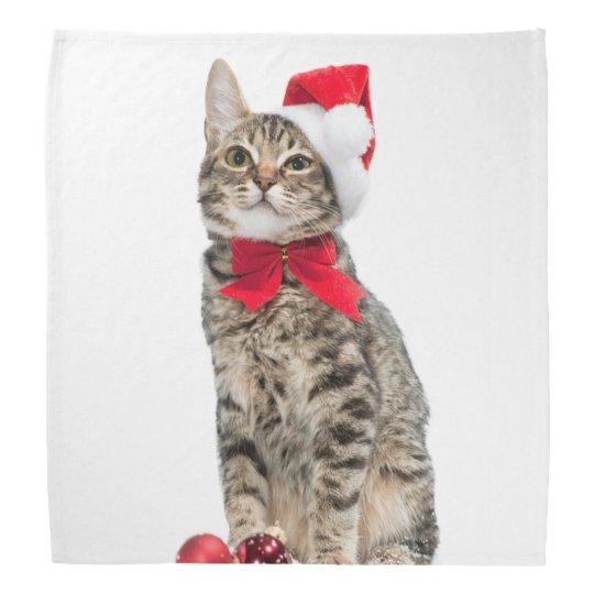 Christmas Cat Santa Claus Cat Cute Kitten Bandana