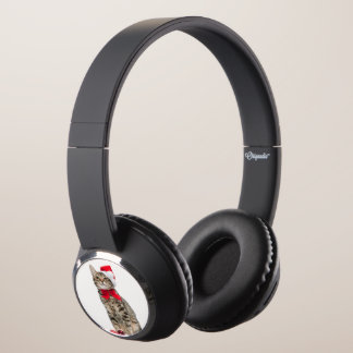 Christmas cat - santa claus cat - cute kitten headphones