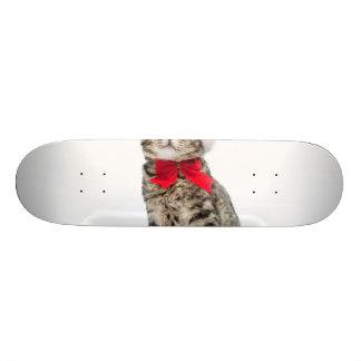 Christmas cat - santa claus cat - cute kitten skateboard