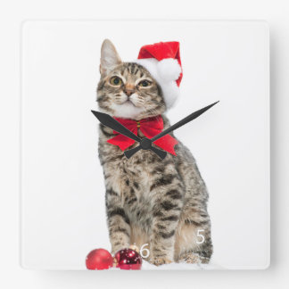 Christmas cat - santa claus cat - cute kitten square wall clock
