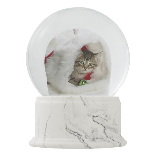 Christmas Cat Snow Globe Zazzle Com