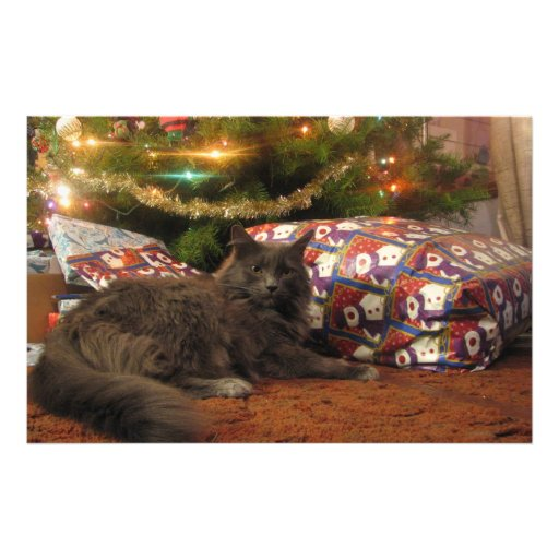 Christmas Cat Stationery