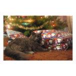 Christmas Cat Stationery Design