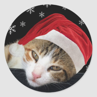 Christmas Cat Stickers