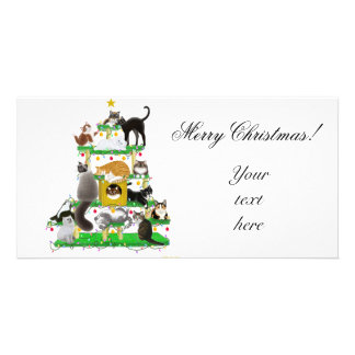 Christmas Cat Tree Photo Card
