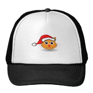 Christmas Cat Wearing Santa Hat